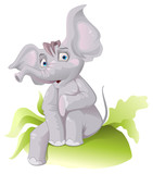 Funny African elephant with big ears