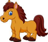 Cartoon funny horse   - 113411240