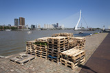 Pallets on the quay side in Rotterdam