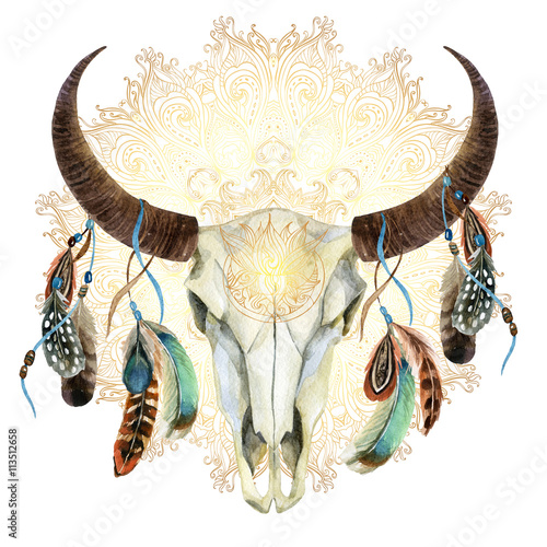 watercolor cow skull with feathers - 113512658