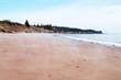 Mist on Seal Cove sand beach