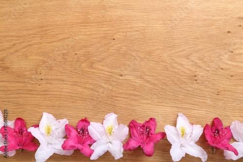 Fotobehang Azalea Frame with flowers.