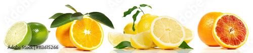 Zitrusfrüchte - Reihe - 113615266