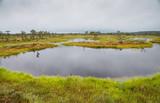 Landscape of Kakerdaja bog in Korvemaa, Estoni