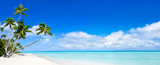 Beach Panorama with blue water and palm trees - 113681409