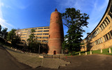 Wieża Piastowska w Opolu.