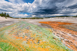 Green and orange stream at the Norris Geyser Basin in Yellowstone National Park, Wyoming