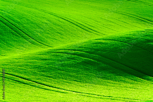 Keuken foto achterwand Lime groen Green wavy hills in South Moravia