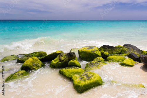caribbean coast, Aruba Poster