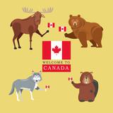 Forest animals. Canada icon. cartoon design. Colorfull illustrat