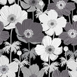 seamless floral pattern with anemone in monochrome