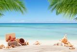Summer beach with shells - 113803675