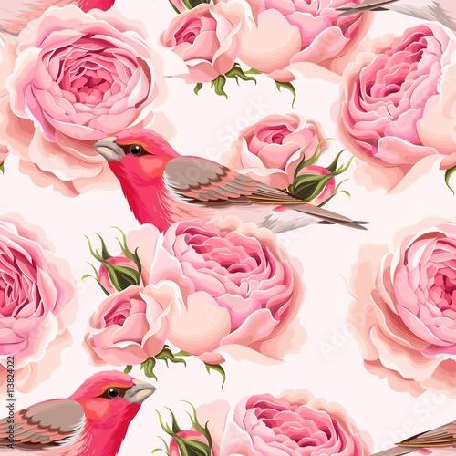 Fototapeta English roses and birds seamless