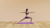Yoga Class Warrior Pose