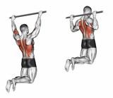 Pull-ups on the bar, touching the back of the head. Target muscles are marked in red. Initial and final steps. 3D illustration