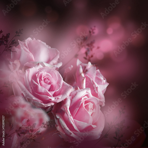 Zdjęcia na płótnie, fototapety, obrazy : Beautiful roses and butterfly, flower, floral background