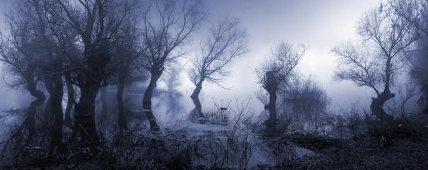 Creepy landscape showing misty dark swamp in autumn. © prudkov
