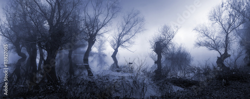 Creepy landscape showing misty dark swamp in autumn. - 113927055