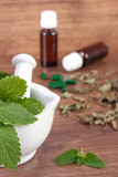 Dried and fresh lemon balm in mortar and medical capsules, choice between pills and alternative medicine - 113937435