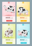 Animal banner with Cows for web design ,vector, illustration