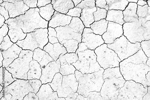 Foto Murales Black and white, Crack soil texture background