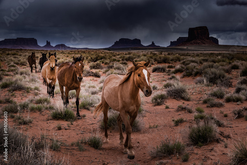 Deurstickers Arizona Wild Horses Monument Valley