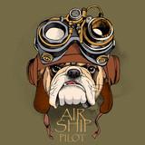 Bulldog portret w kasku Steampunk.
