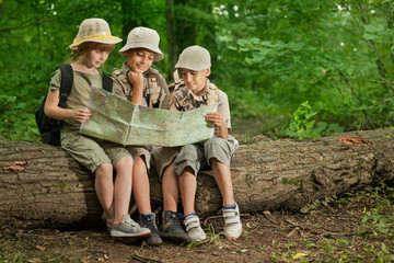 summer camps,scout children camping and read map in forest