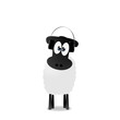 Schaf mit Beat