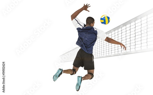 Fototapeta Rear view of sportsman posing while playing volleyball