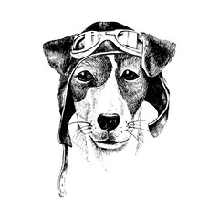 Hand drawn dressed up dog aviator