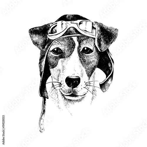 Hand drawn dressed up dog aviator - 114128033