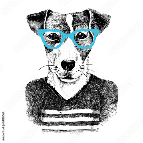 dressed up dog in hipter style - 114128046