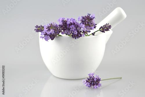 Fototapeta Lavender flowers in a mortar