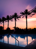 Sunset over pool with palm trees in silhouette against serene beautiful summers evening sky.
