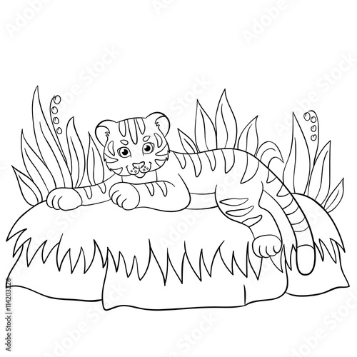 Coloring Pages Wild Animals Little Cute Baby Tiger Smiles