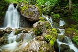 Fototapety natural waterfall in the forest / natürlicher Wasserfall im grünen Wald