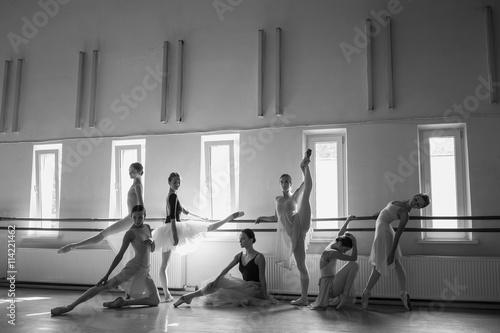 Fototapeta The seven ballerinas at ballet bar