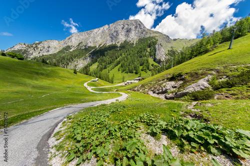 trail on through the mountains of the bavarian alps / Wanderweg durch die bayris Poster