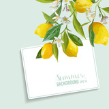 Lemons and Flowers Card. Fruit Background. Wedding Invitation. Vector