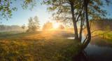 Bright summer sunrise