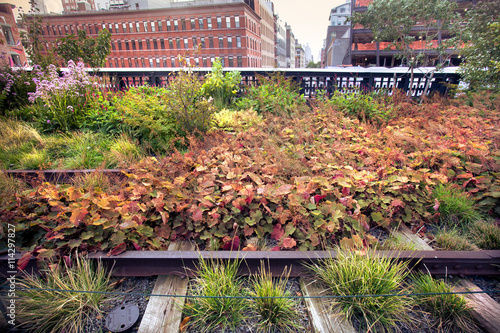 View of tracks and garden seen along The High Line Park Poster