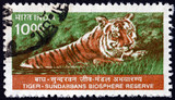 Postage stamp India 2000 Tiger