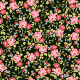 Seamless floral pattern with little pink roses, on black background. - 114353463