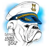 Image of portrait a dog bulldog in a sailor's cap. Vector illustration. - 114372225