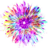 Abstract color splash and isolated flower illustration. - 114372424