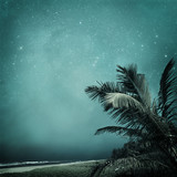 tropical background - 114372623
