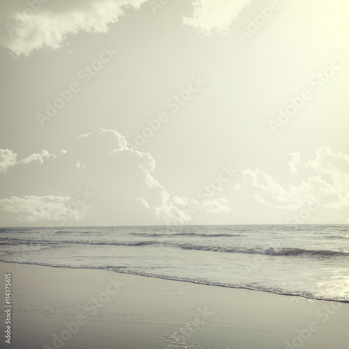 tropical background - 114375615