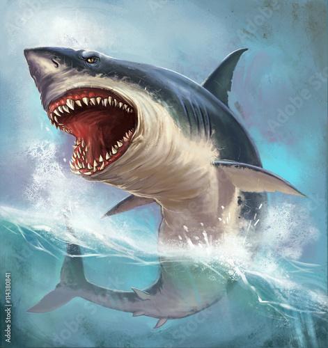 shark - 114380841