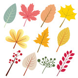 Autumn leaves with variation style and vintage colour